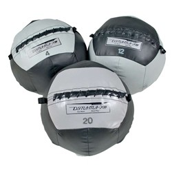 Exercise Power Systems Dynamax Medicine Ball Accelerator II 10 lb.