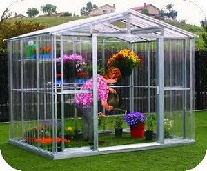 80391 DuraMax Outdoor Metal Greenhouse 8'x12'