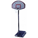 Lifetime Portable Basketball Hoop - 1225 Pro Court Goal System