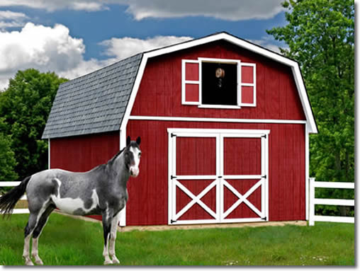 Roanoke 16'x24' Best Barns Wood Shed Barn Kit with Barn Doors